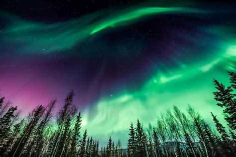 Iceland Northern Lights 163 489pp City Hotel Bed