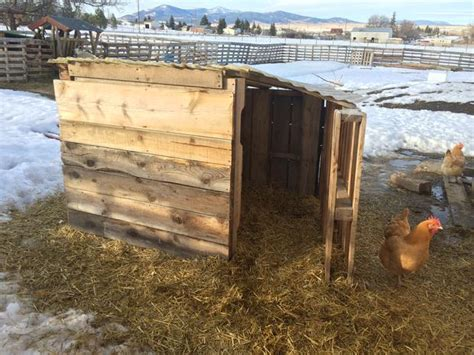 Low Cost Goat Shed by Pallet Goat House Easy And Low Cost A Of Heritage