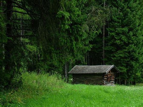 la casa nel bosco casa nel bosco