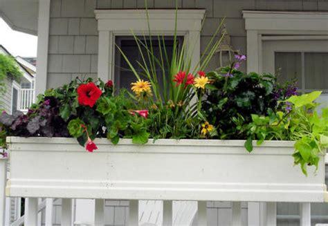 Porch Rail Planter Boxes by Dr Dan S Garden Tips A Bountiful Box Of