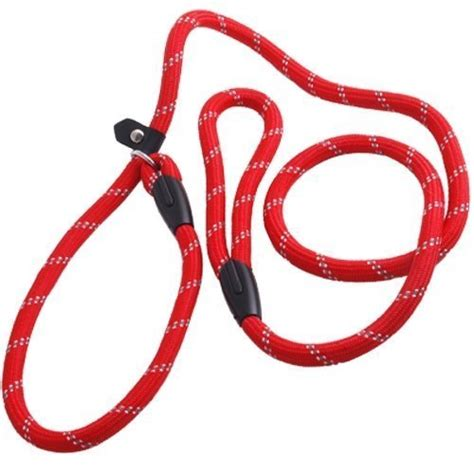how to use whisperer lead how to choose and use the right collars for your labrador