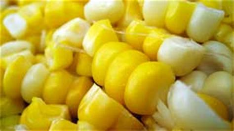 is corn bad for dogs is corn in pet food bad