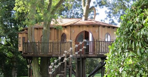 blue forests rustic treehouse office   high flying