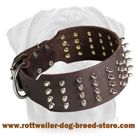 collars for rottweilers rottweiler spiked collars images
