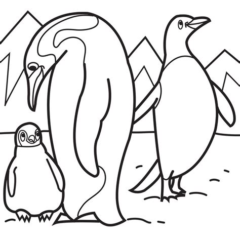 coloring page for penguin free coloring pages of cartoon penguins