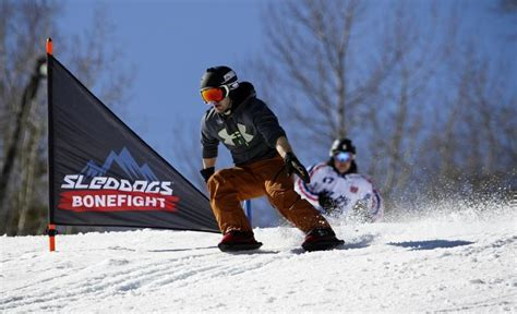 sled dogs snowskates sled dogs canada snowskates profile at startupxplore