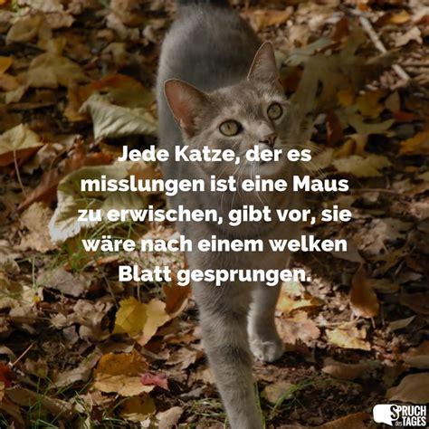 Was Ist Eine Maus by Jede Katze Der Es Misslungen Ist Eine Maus Zu Erwischen