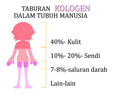 K Liquid Mixed Collagen Drink sahabat sihat anda keistimewaan k liquid mixed collagen drink