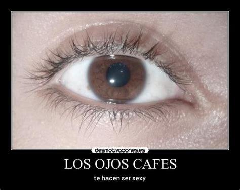 imagenes ojos cafes im 225 genes y carteles de cafes pag 2 desmotivaciones