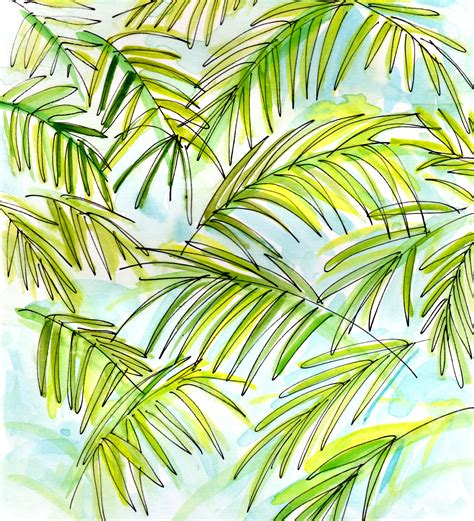 Palm Search Palm Fronds Driverlayer Search Engine