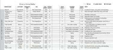 fall garden planting schedule fall bulb planting guide chart