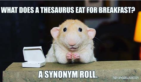 Happy Monday Memes - happy monday meme true eats