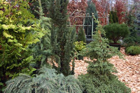 Bilder Fur Gartengestaltung