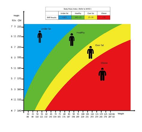 bmi table for bmi table 6 female bmi chart men resume pictures chart