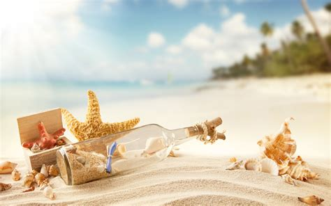 shell wallpaper sand and shells background wallpaper