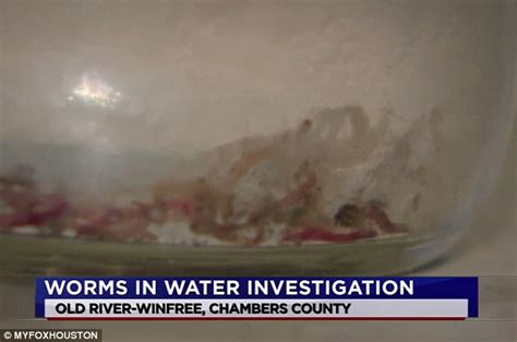 water worms in bathroom worms flow from texas town s tap water as residents demand