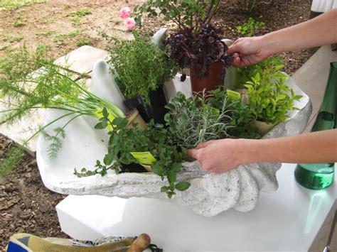 container herb gardening create a stunning herb container garden hgtv