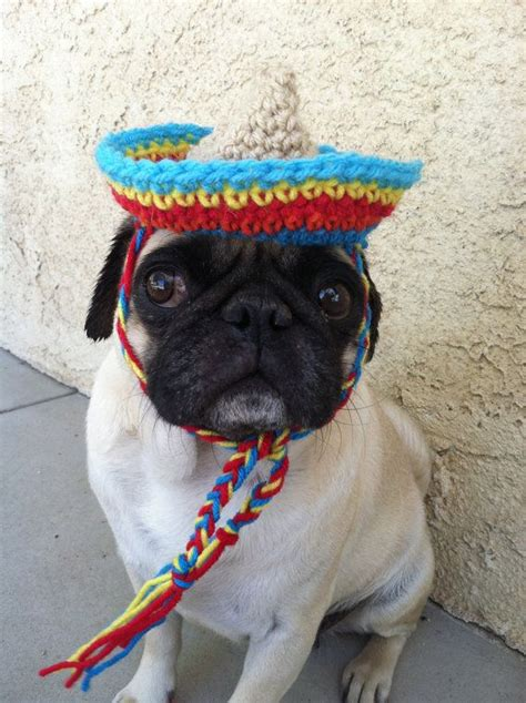 caps for pugs hats for dogs sombrero hats for pugs cinco de mayo novelty hats h