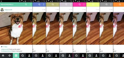instagram themes for iphone free how to theme instagram with any color you want on android