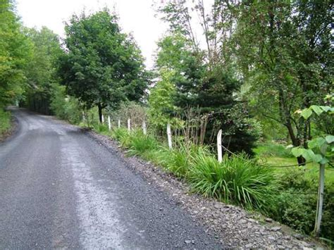 home driveway design ideas charming country home driveways natural driveway