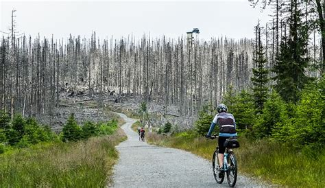 iron curtain trail europe is turning the iron curtain into a cycling path to