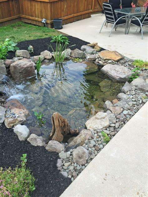 Fish For Backyard Ponds by Best 25 Garden Ponds Ideas On Pond Ideas