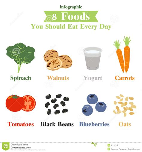 vegetables i should eat everyday eight foods you should eat everyday infographic stock