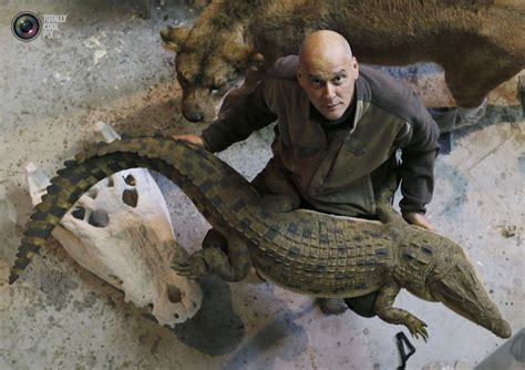 where the animals go the animal sculptor from belgium totallycoolpix com