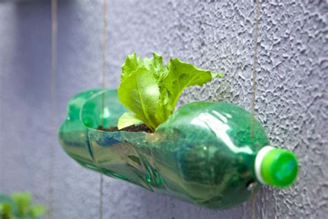 Vertical Garden From Plastic Bottles Plastic Bottle Gardens Isotherm Thermal Insulation
