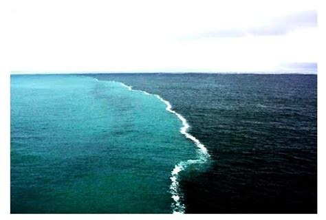 Search Meet Gulf Of Alaska Two Oceans Meet But Don T Mix Wonders Of Our World