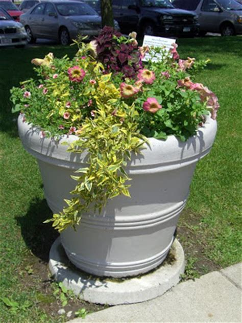 Test Planter by A Test Garden For Future Annuals On Lake Erie