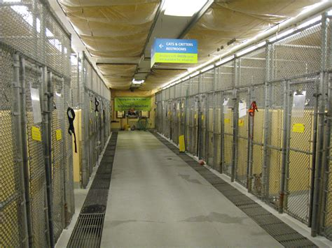 seattle animal shelter dogs mayor murray councilmember godden cut the leash on seattle animal shelter s