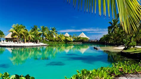tropical island swimming pool resort  hd desktop