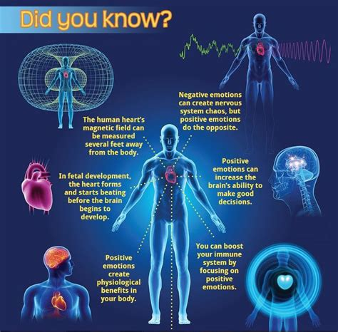 pattern energy el arrayan how emotions affect your health the mind body connection