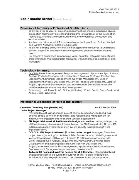 professional summary resume exles professional resume