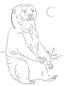 sun bear coloring pages dibujo de oso malayo sentado para colorear dibujos para