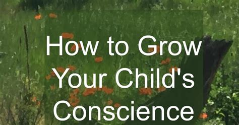 the compass of a conscience books eternal moments how to grow your child s conscience