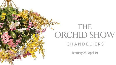 The Orchid Show Chandeliers The New York Botanical Garden The Orchid Show Chandeliers The Culture Concept Circle