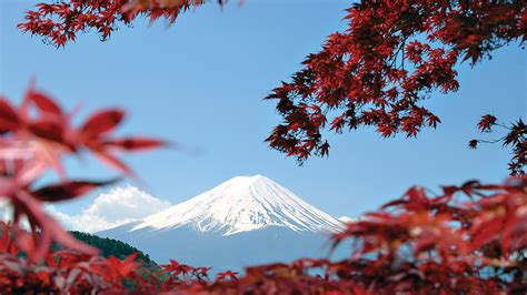 in japan japan express osaka to tokyo by g adventures with 9 tour