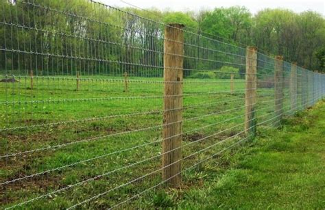 hog wire fence how to build a hog wire fence peiranos fences