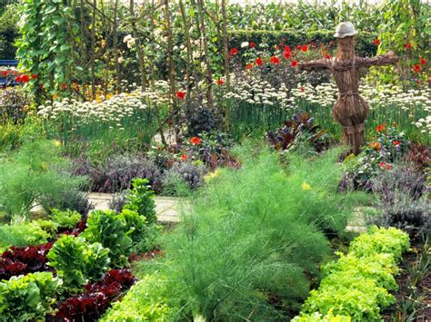 kitchen gardens design delicious beauty the successful kitchen garden