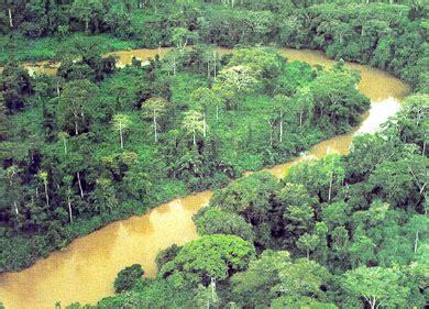 dan wood fertighaus erfahrungsbericht best bilder zum tropischen regenwald images