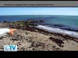 uffici ama ostia a chi ritirer 224 i detriti della marea nera i balneari