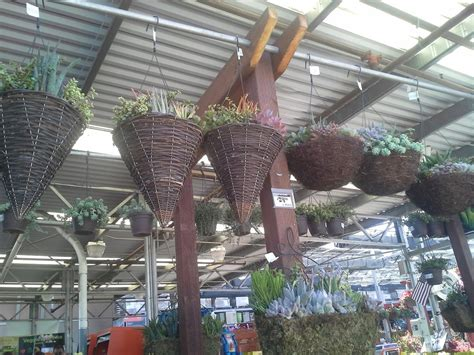 home depot garden center oakland ca yelp