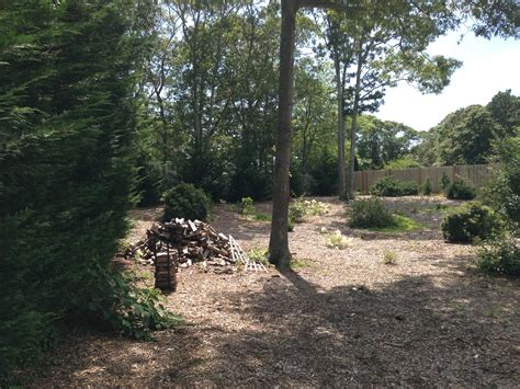 cape cod landscaping cape cod landscaping backyard transformation meyer