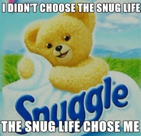 Snuggle Bear Meme - fabric softener wallpaper 2017 2018 best cars reviews