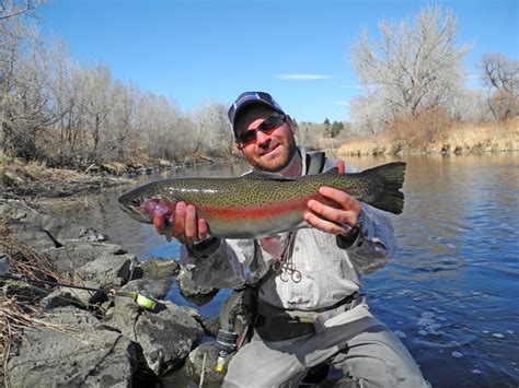 colorado fishing reports south platte minturn anglers guide service colorado fishing reports 3