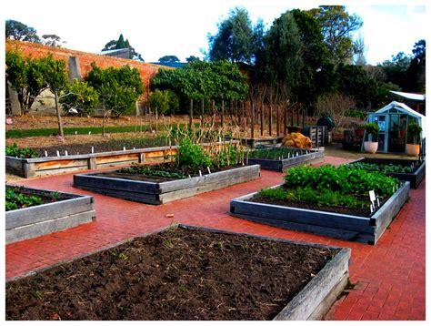 cundall vegetable garden a hobart food jaunt the hungry bon vivant