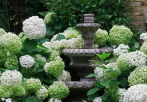 garten hortensie hortensien pflege was sie 252 ber die sch 246 nen blumen wissen