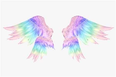colored wings gorgeous wings pink wings blue wings color wings png